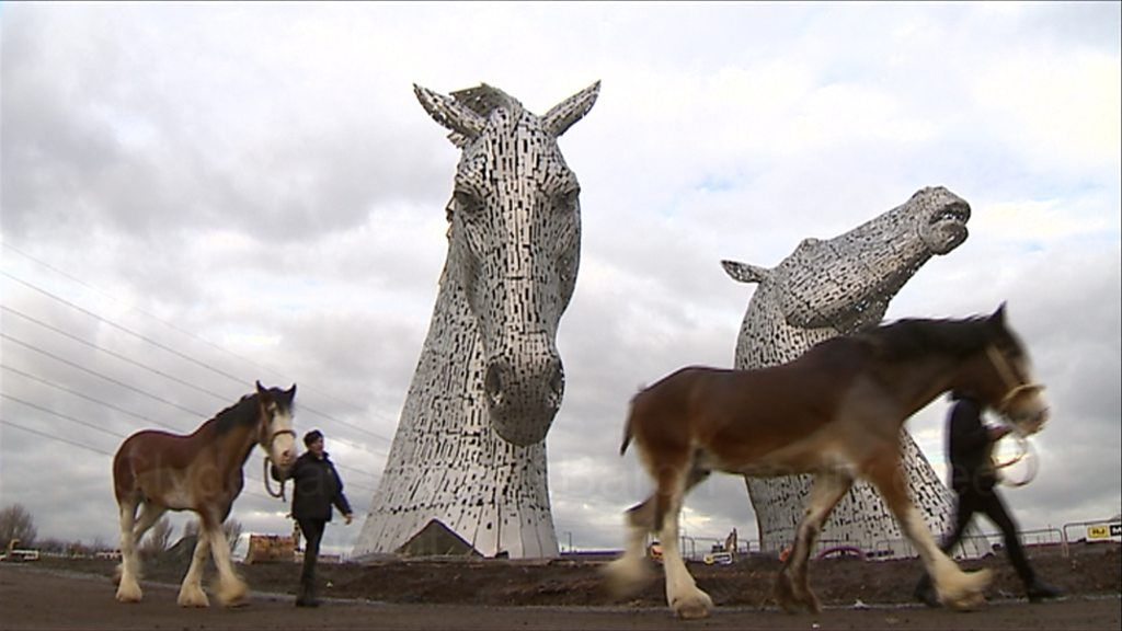 A horse that modelled for The Kelpies sculpture dies