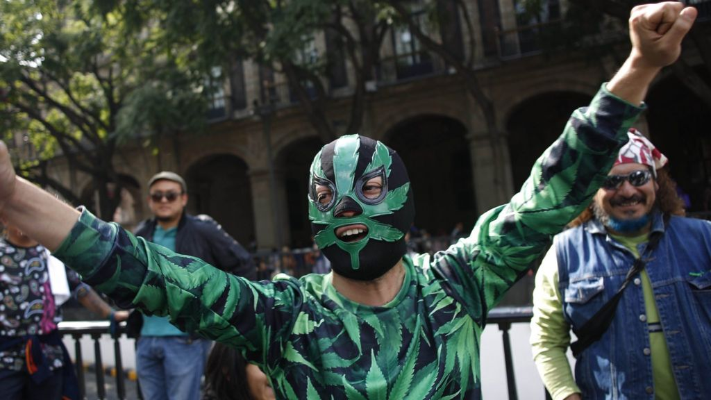 mexican marijuana activists on a high after supreme court ruling bbc news. Black Bedroom Furniture Sets. Home Design Ideas