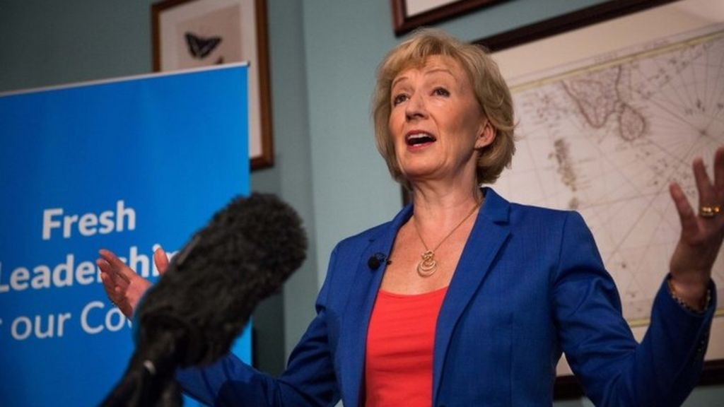 andrea leadsom publishes cv amid claims over career history