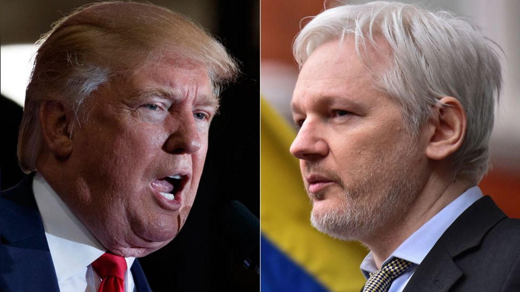 Donald Trump backs Julian Assange over Russia hacking claim