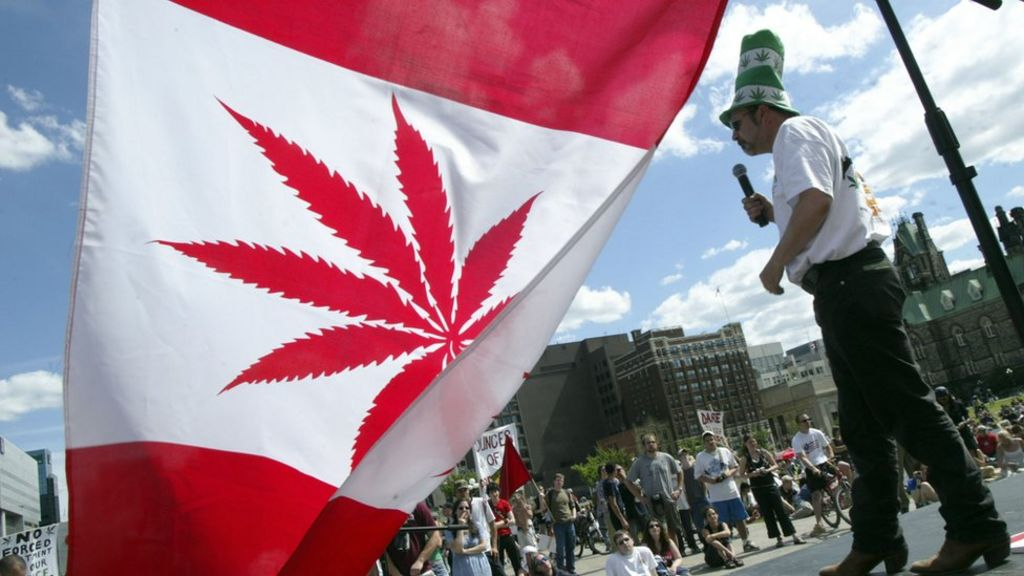 Canada to legalise marijuana 'by 2018' - BBC News