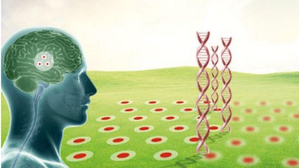 Virtual reality maze 'predicts Alzheimer's disease' - BBC News