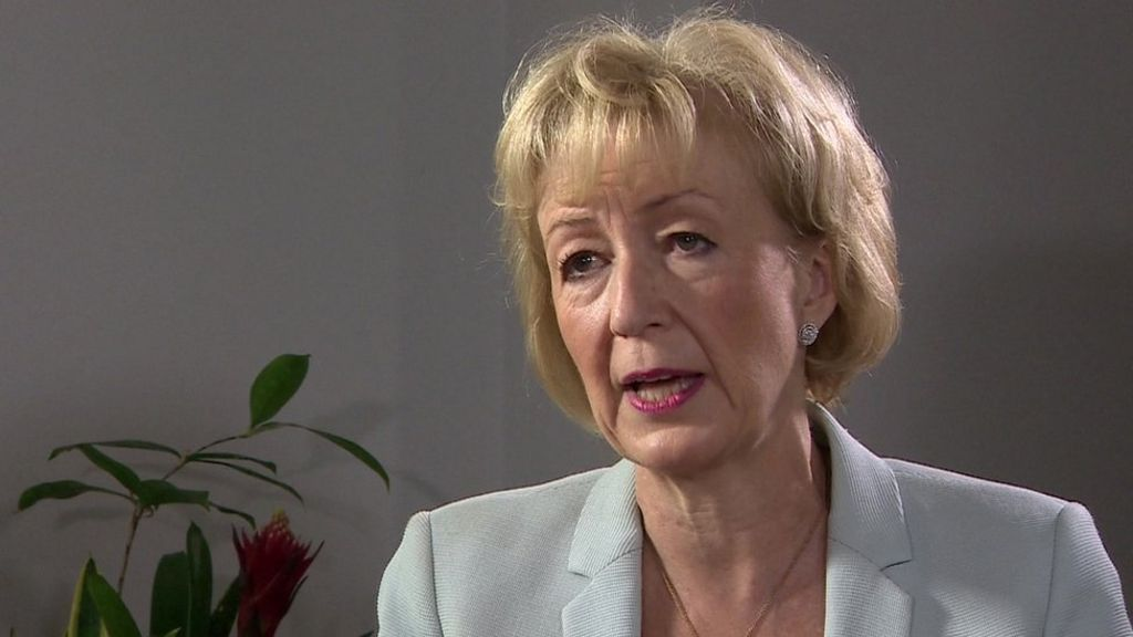 tory leadership  leadsom says cv criticism is  u0026 39 ridiculous u0026 39