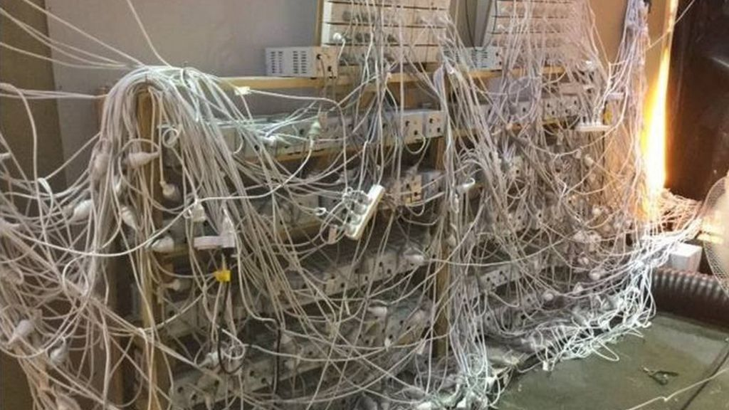 Sydney Cannabis Haul Uncovers Dangerous Power Cable Nest