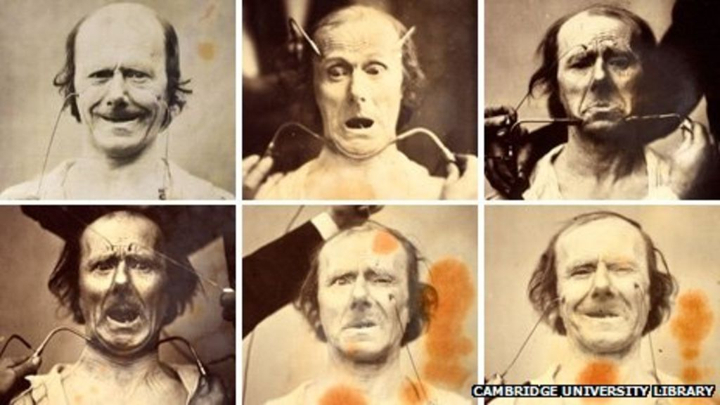 The Charles Experiment Crowdsourcing Darwin's...