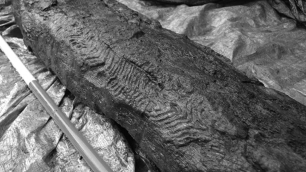 Stone age carved wooden post found at rhondda wind farm