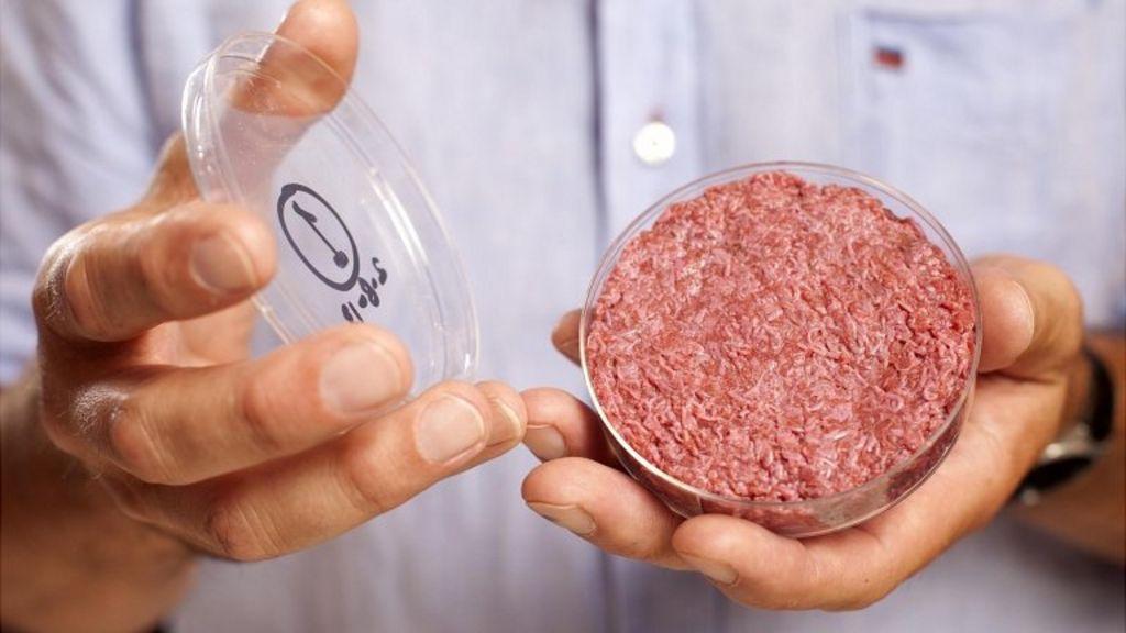 Lab Grown Burger Bbc World's First Lab-grown Burger