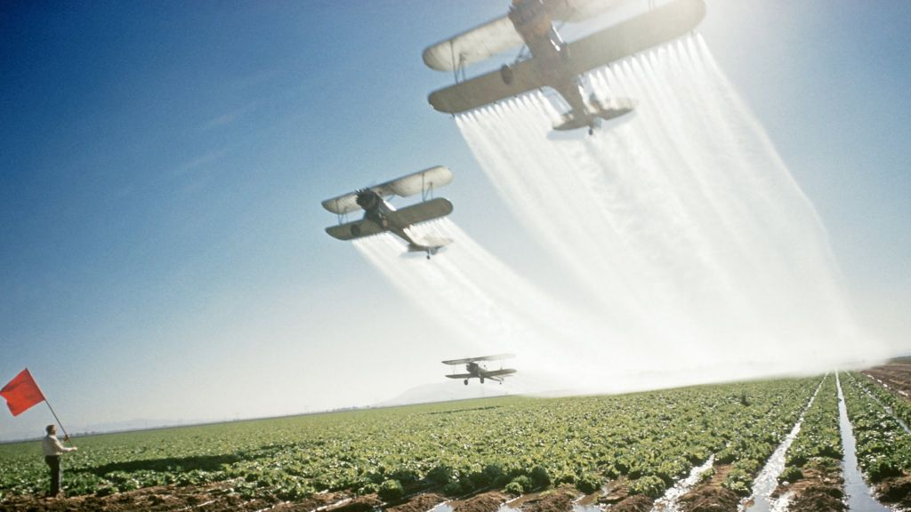 info on use of ddt Agricultural pesticides and human health  in the way that they use the pesticides and the protection  effects of agriculture pesticides such as ddt.