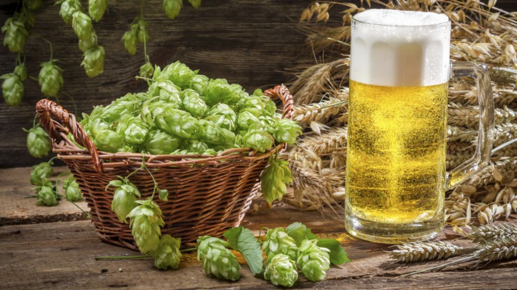 Who what why is the craft beer craze going to cause a for Craft beer capital of the world