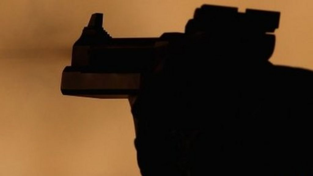 Jersey gun ownership down since 2012 - BBC News