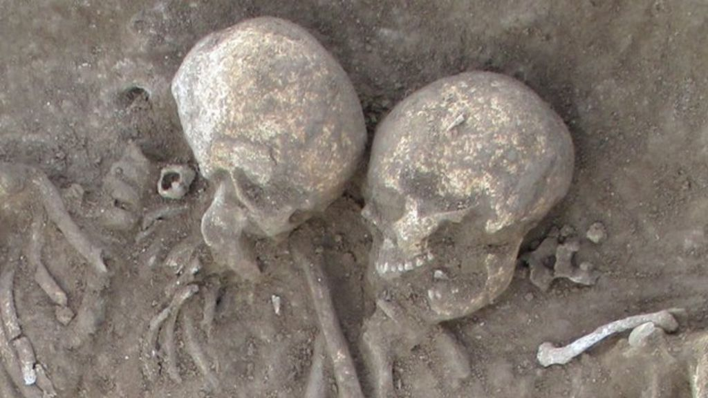 Anglo saxon skeletons found in suffolk dig bbc news