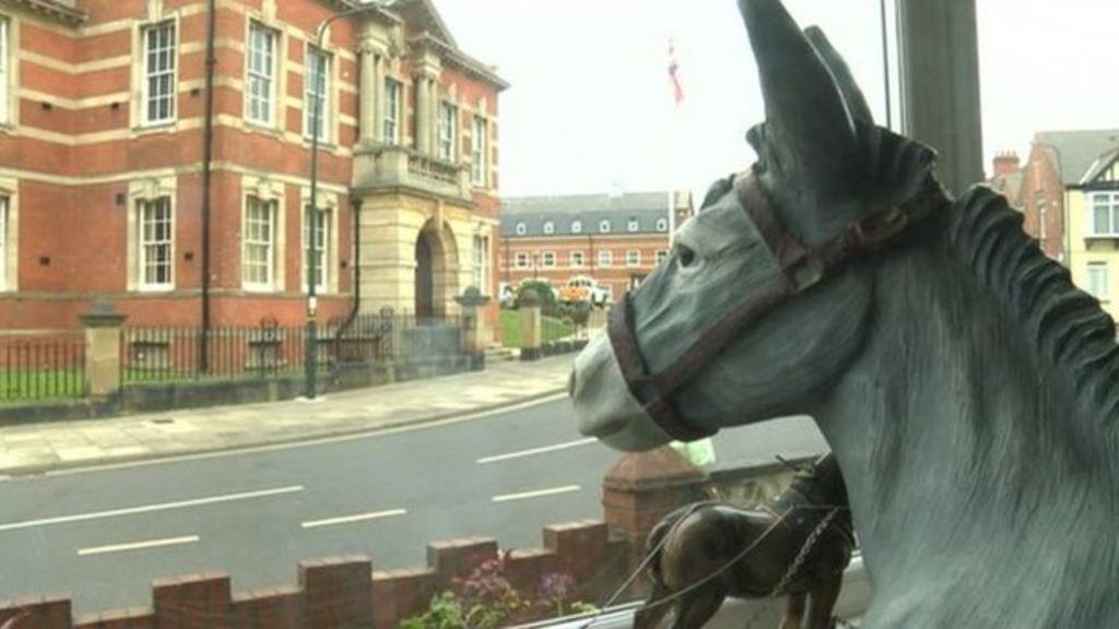 Donkey In Window A Selfie Sensation In Cleethorpes Bbc News