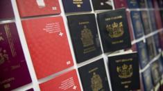 Fake passports displayed at immigration bureau in Bangkok on February 10, 2016