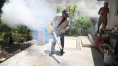 A Miami-Dade County mosquito control inspector fumigates the Wynwood neighbourhood