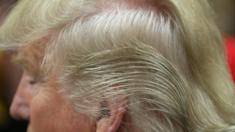 Detail of Republican presidential candidate Donald Trump's hair after a campaign rally in Council Bluffs, United States (31 January 2016)