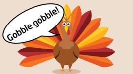 US Kids Explain Thanksgiving