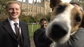 Parliamentary dog of the year
