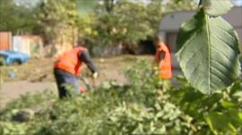 Two men working in a common garden