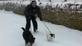 Brett Leese being pulled along by his pet collies Bill and Maggie
