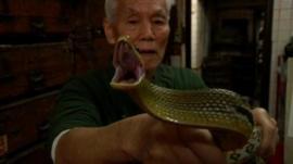 Man holding snake