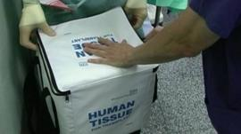 Freezer bag designed for carrying human organs for donation