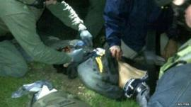 Dzhokhar Tsarnaev arrested by police