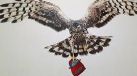 The Hen Harrier mural is titled