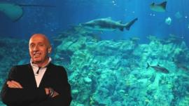 Allan Zeman in front of an aquarium