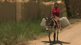 A boy riding a donkey laden with goods