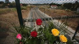 Flowers near train line