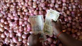 Onion trader counts money