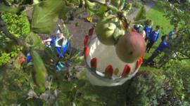 Children picking apples