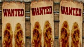 Wanted poster with monkeys
