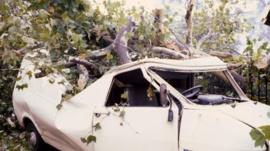 Aftermath of the Great Storm of 1987