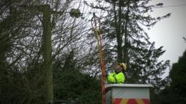 Engineer works on power line