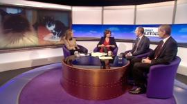 Daily Politics panel debating cat contest