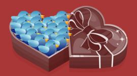 Illustration of Twitter birds in box of chocolates