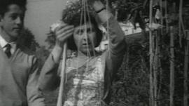 Woman picking 'spaghetti'