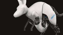 Bionic Kangaroo