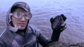 Diver holding an abalone