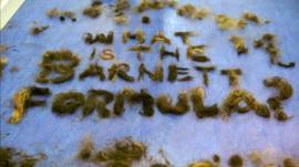 What is the Barnett formula?