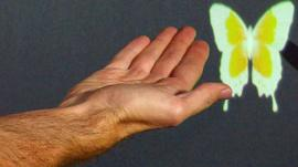 A hand next to a virtual butterfly