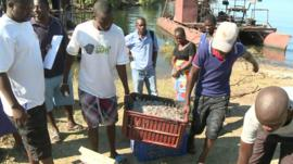 Fishermen in Zimbabwe carrying a crate of fish