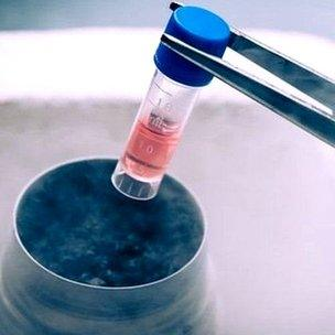 तरल नाइट्रोजन की मदद से ठंडा रखने की तकनीक