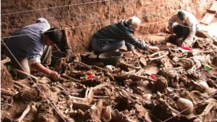 Especialistas trabalham em cova