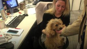 A dawg up in tha office