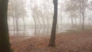 امیر: پارک قدس رشت، هفت صبح کنار بقیه در مه ورزش میکردم