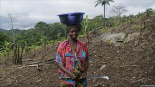 Woman working in a field near the village of Sengema
