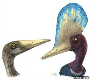 Pterosaurs (Witton)