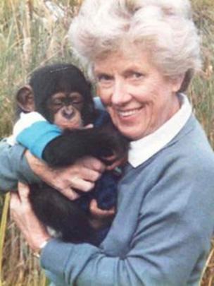 Image caption Margaret Jackson pictured in 1987 with a baby chimpanzee - _57630290_margaret-jackson-with-a-bab